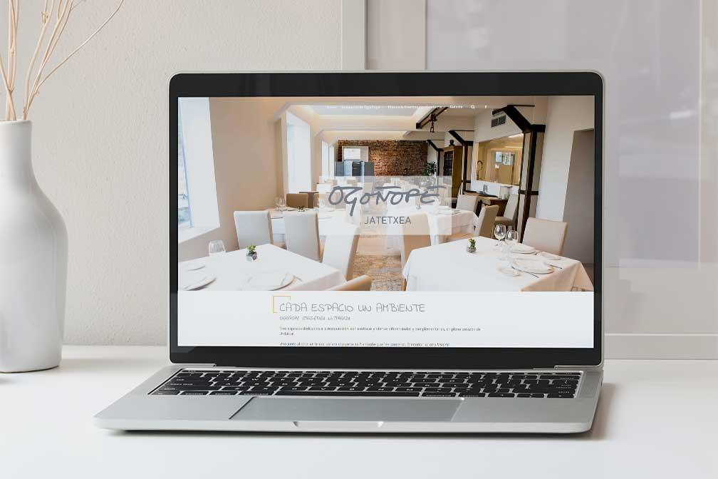 Nueva-europa-diseño-web-ogoñope-comunicaion-turismo